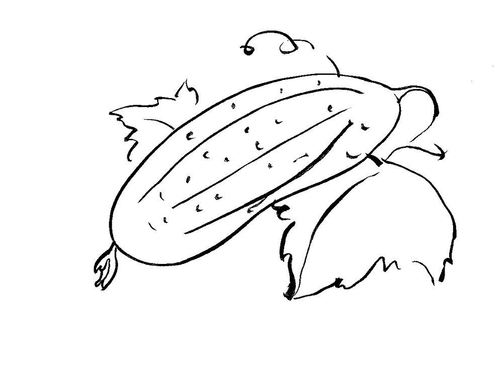 Cucumber Coloring Pages To Download And Print For Free