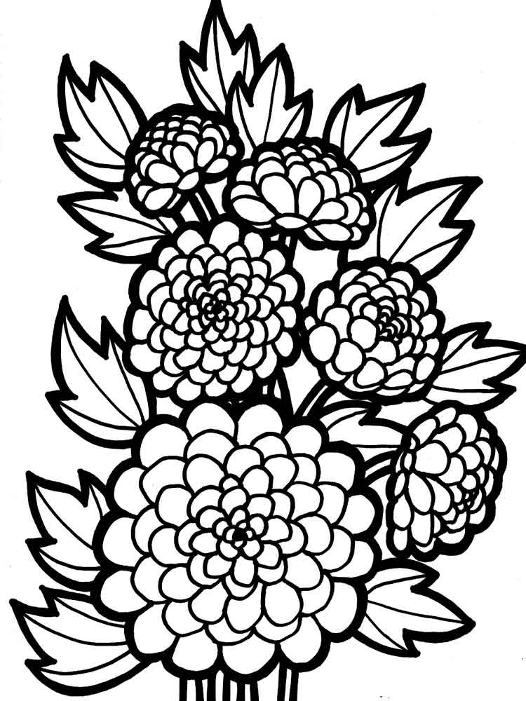 l flower coloring pages | Chrysanthemum coloring pages to download and print for free
