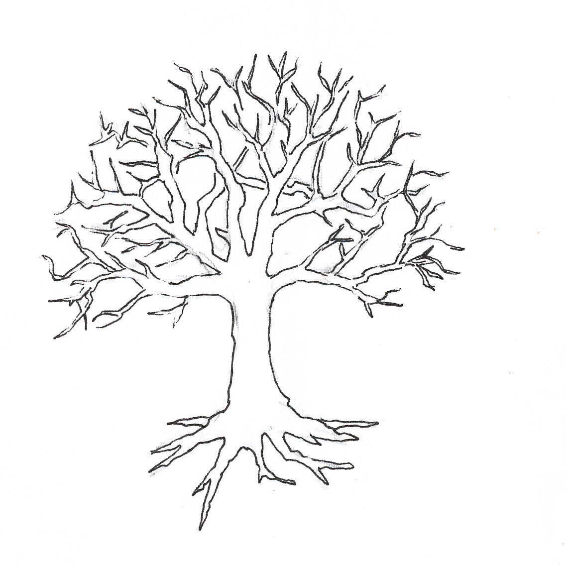 Tree without leaves coloring page to print and download for kids for