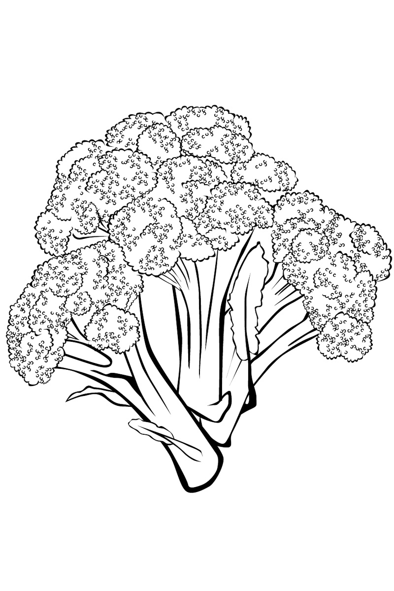Broccoli coloring pages to download