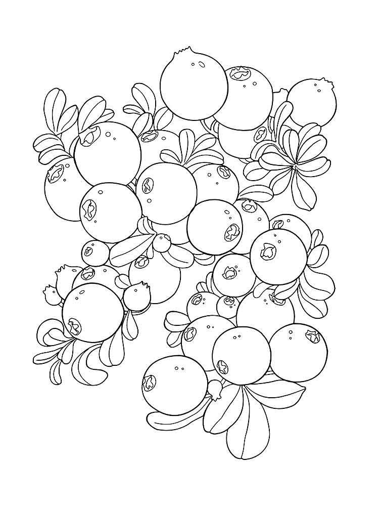 Blueberries coloring pages to download