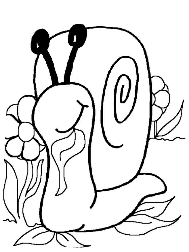 Snail coloring pages to download
