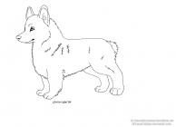 Corgi coloring pages