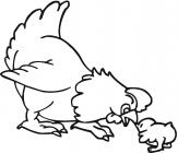 Hens coloring pages