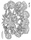 Family trees coloring pages