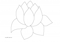 Water lilies coloring pages