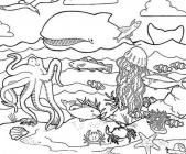 All animals coloring pages