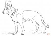 German shepherd coloring pages