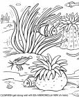 Coral reef coloring pages
