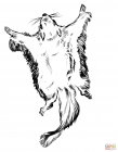 Flying squirrel coloring pages