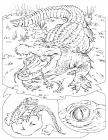 Rattlesnakes coloring pages