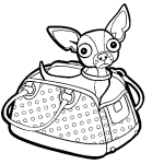Chihuahua Coloring Pages
