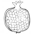 Garnet fruit coloring pages