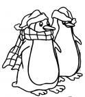Penguins coloring pages