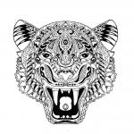 Antistress tiger Coloring Pages