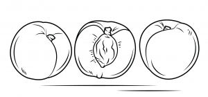 Peach coloring pages