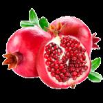 Garnet fruit coloring pages