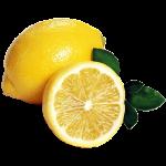 Lemon coloring pages